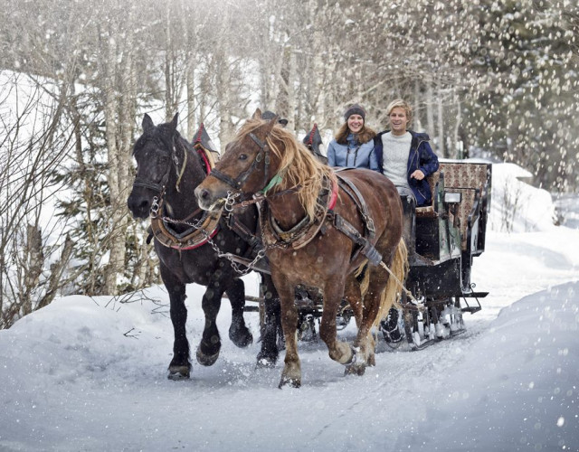 Horse-Sleigh-Riding-1200x704.jpg